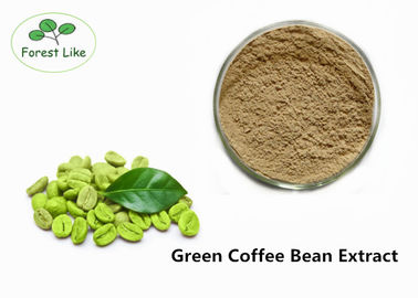 China Green Coffee Bean Extract Natural Weight Loss Powder 50% Chlorogenic Acid supplier