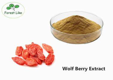 China Herbal P.E. Goji Berry Extract Male Enhancement Powder 50% Polysaccharides supplier