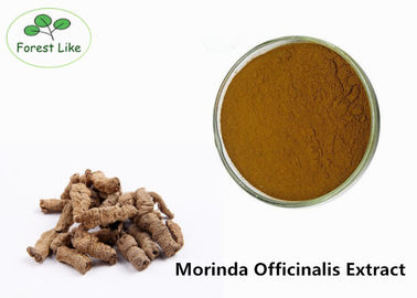 China Health care Products Morinda Officinalis Extract Powder Improving Kidney Weak supplier