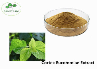 China Natural P.E. Male Enhancement Powder Cortex Eucommiae Extract for Medicine supplier