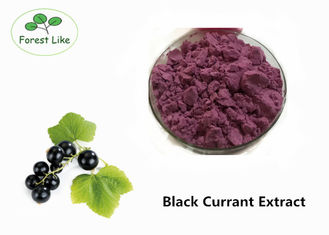 China Antioxidant Plant Extract Black Currant Extract Powder 40% Proanthocyanidins supplier