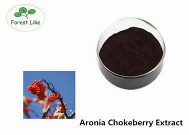 China Facial Whitening Powder Chokeberry Extract Powder 10% Proanthocyanidins supplier