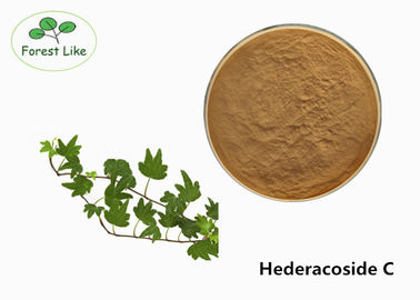 Food Field Ivy Leaf Extract Hederacoside C / Hedera Helix Extract