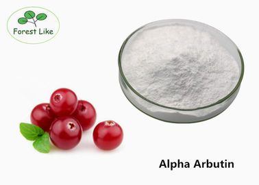 China Natural Bearberry Extract Powder / Skin Whitening Alpha Arbutin Extract 99% supplier