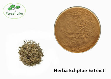 China Brown Yellow Plant Extract Powder Natural Herb Herba Ecliptae Extract Food Grade supplier