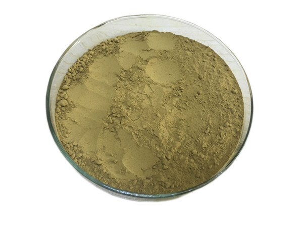 Natural P.E. Cnidium Monnieri Extract Osthole 10% Powder for Pesticide