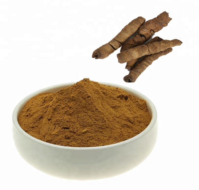 Health care Products Morinda Officinalis Extract Powder Improving Kidney Weak